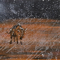 Buffalo in a Snow Storm, bison paintings by Jim klippel and Chris Canova