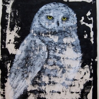 Snowy Owl - Acrylic on rice paper