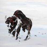 Spirit in the Snow - Bison upon a Snowy Prairie abstract by Jim & Chris